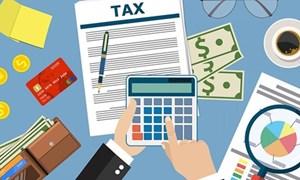 Các nghĩa vụ người nộp thuế phải hoàn thành trước khi chấm dứt hiệu lực mã số thuế