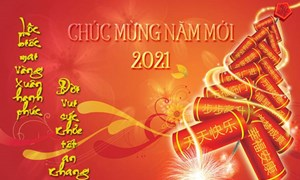 Nhiều hoạt động văn hóa đón chào Năm mới 2021