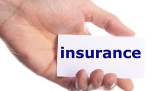 Thị trường bảo hiểm tăng trưởng nhanh nhất trong 6 năm