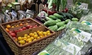 Nhập nhèm nguồn gốc thực phẩm hữu cơ Organic