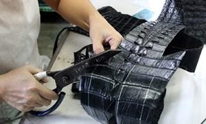 Hóa giải thách thức cho ngành Da giày