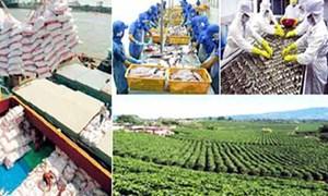 Gỡ khó cho xuất khẩu nông sản