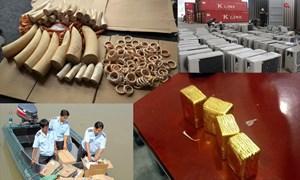 Những con số đáng chú ý về chống buôn lậu và gian lận thương mại