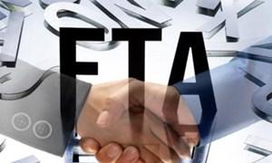 Càng nhiều FTA, càng cảnh giác sự cố môi trường