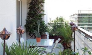 Vườn xanh tại ban công căn hộ chung cư
