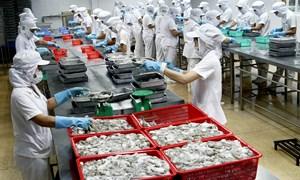 Cấp chứng thư cho thủy sản xuất khẩu qua cơ chế một cửa quốc gia