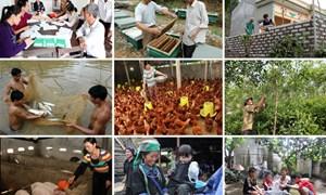 Một số phân tích thực chứng về chính sách giảm nghèo tại Việt Nam
