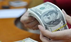 Ngân hàng Nhà nước mua vào hơn 100 triệu đô la Mỹ