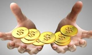 Ngân hàng tự ý thu phí thường niên thẻ năm thứ hai là vi phạm luật