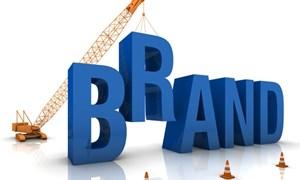 Xây dựng thương hiệu doanh nghiệp bằng định vị thương hiệu phát triển bền vững