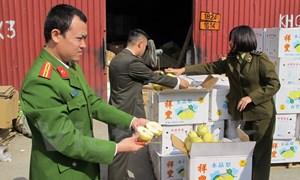 Bắt gần 4 tấn trái cây không rõ nguồn gốc trên đường về Hà Nội