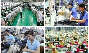 Thị trường lao động trong năm 2017 hứa hẹn sẽ khởi sắc