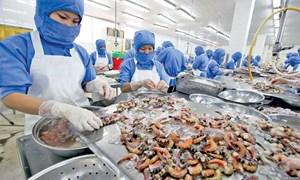 Ngành tôm Việt Nam có lợi thế tuyệt đối