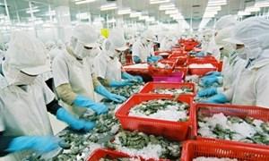 Úc nới lỏng lệnh cấm nhập khẩu tôm