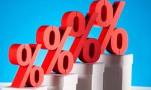 Lãi suất vay thỏa thuận không được vượt quá 20%/năm?