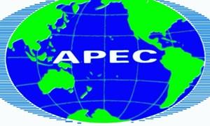 Thành viên APEC ưu tiên hội nhập kinh tế lên vị trí hàng đầu