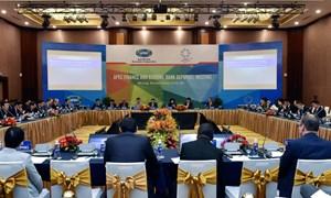 Việt Nam mong muốn đóng góp nhiều hơn cho tiến trình hợp tác APEC