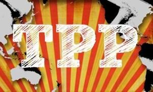 Vòng đàm phán mới 'thay thế' TPP