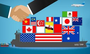 """TPP – """"bản lề trật"""" của trật tự thương mại mới?"""