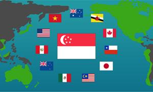 Việt Nam được lợi gì từ các Hiệp định thương mại tự do?