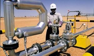 Nga: Quá sớm để bàn về gia hạn cắt giảm sản lượng dầu mỏ