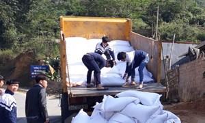 Tiếp tục triển khai thực hiện cấp gạo cho gần 500 nghìn học sinh của 47 tỉnh