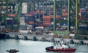 Singapore: Xuất khẩu tăng mạnh nhất trong vòng 5 năm