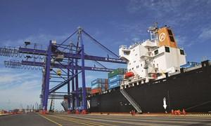 Sẽ thí điểm vận chuyển hàng hóa trung chuyển giữa các cảng biển quốc tế