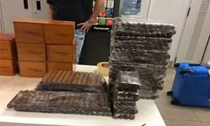 Tạm giữ, điều tra vụ nhập lậu gần 17.000 điếu xì gà tại sân bay Nội Bài