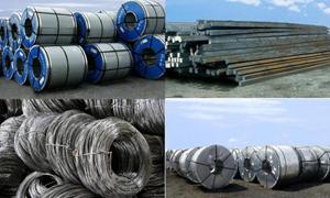Giám sát chặt chẽ việc giám định, kiểm tra chuyên ngành với mẫu thép nhập khẩu