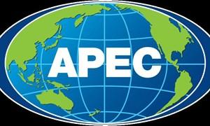 Đợt hội nghị lớn thứ hai của Năm APEC 2017 khai mạc