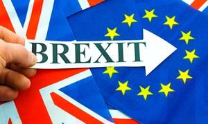 Khởi động tiến trình đàm phán Brexit