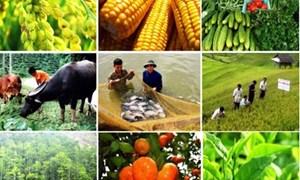 Hơn 100.000 tỷ đồng dành cho đầu tư vào nông nghiệp công nghệ cao