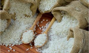 Chiến lược phát triển thị trường xuất khẩu gạo- Tăng chất, giảm lượng