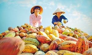 Hiến kế đưa nông sản Việt vào thị trường Trung Quốc