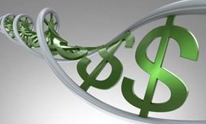 BIS: Kinh tế lạc quan nhưng rủi ro cũng tăng cao