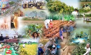 Hơn 5,1 triệu USD hỗ trợ thu thập số liệu về dân số và phát triển