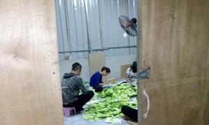 Hà Nội bắt giữ hơn 40.000 sản phẩm không rõ nguồn gốc