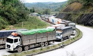 Cơ hội xuất khẩu chính ngạch sang Trung Quốc