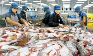 62 doanh nghiệp xuất khẩu hải sản cam kết chống khai thác bất hợp pháp