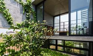 Lý do nhà khối hộp ở Sài Gòn đoạt giải nhất Kiến trúc thế giới