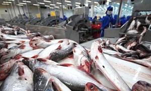 EU là thị trường xuất khẩu thủy sản số 1 của Việt Nam