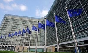 EC thông qua quy định mới chống gian lận thương mại