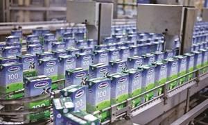 Sau Sabeco, tỷ phú Thái quyết gom thêm cổ phần Vinamilk