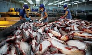 Năm 2018, xuất khẩu cá tra có thể đạt 1,85 tỷ USD