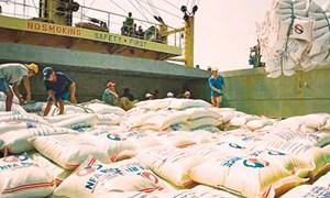 Xuất khẩu gạo - Khởi sắc đầu năm