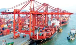 Tăng sức mạnh xuất khẩu Việt Nam