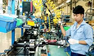 Mỏi mắt tìm lao động chất lượng cao
