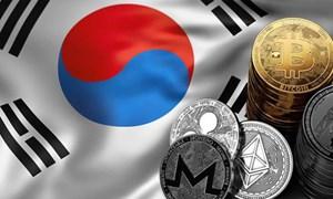 """5.000 nhà đầu tư Hàn """"đánh"""" trên sàn chứng khoán Việt"""