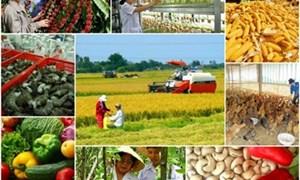 Điều kiện doanh nghiệp bảo hiểm triển khai chính sách hỗ trợ bảo hiểm nông nghiệp